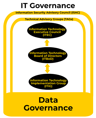 IT governance structure